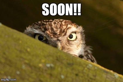 Soon image tagged in funny soon owls made w imgflip meme maker
