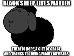 Sheeplive