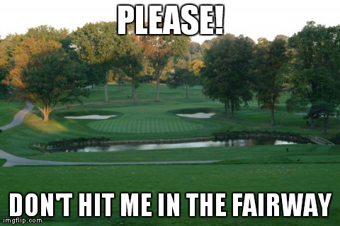 PLEASE! DON'T HIT ME IN THE FAIRWAY | Generated image from funny,golfing,anthropomorphisms generated with the Imgflip Meme Maker