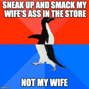 Image tagged in memes,socially awesome awkward penguin generated with the Imgflip meme maker
