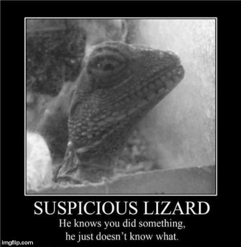 Image tagged in funny,demotivationals,lizard