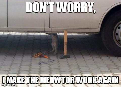My Car Doesn't Work Again And Then My Cat Do This.