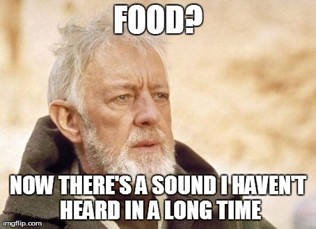 My Cat Every Time I Feed Him.