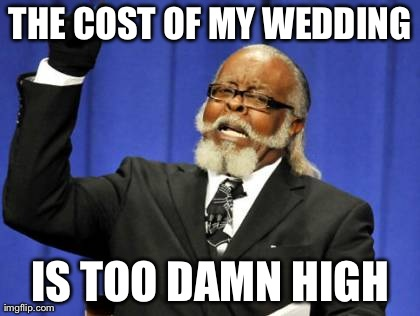 THE COST OF MY WEDDING IS TOO DAMN HIGH | Generated image from memes,too damn high generated with the Imgflip Meme Generator