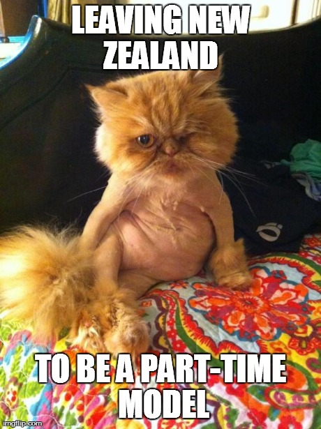 LEAVING NEW ZEALAND  TO BE A PART-TIME MODEL generated with the Imgflip Meme Generator