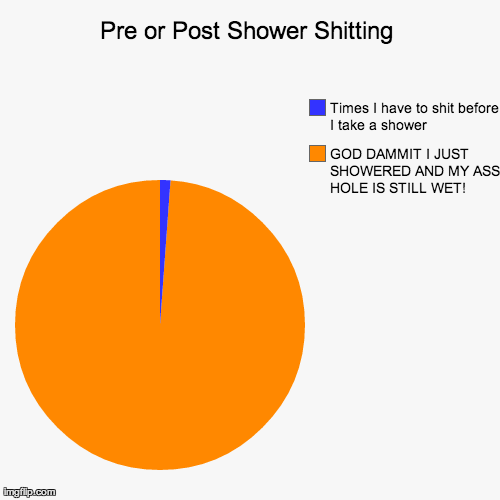 Pre or Post Shower Shitting GOD DAMMIT I JUST SHOWERED AND MY ASS HOLE IS STILL WET! Times I have to shit before I take a shower | Generated image from funny,pie charts generated with the Imgflip Pie Chart Maker