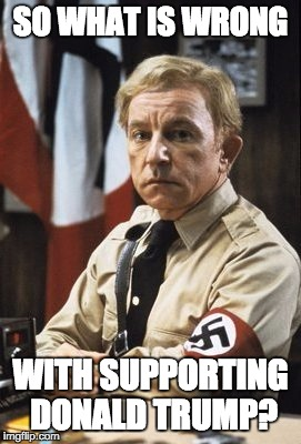 Illinois Nazi | SO WHAT IS WRONG WITH SUPPORTING DONALD TRUMP? | image tagged in illinois nazi | made w/ Imgflip meme maker