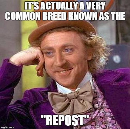 "Creepy Condescending Wonka Meme | IT'S ACTUALLY A VERY COMMON BREED KNOWN AS THE ""REPOST"" 