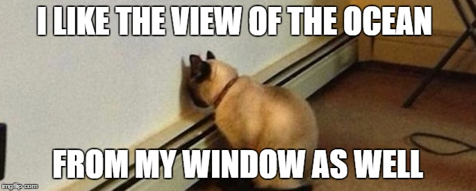 I LIKE THE VIEW OF THE OCEAN FROM MY WINDOW AS WELL | made w/ Imgflip meme maker