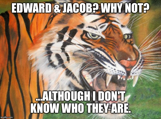 Hipster tiger | EDWARD & JACOB? WHY NOT? ...ALTHOUGH I DON'T KNOW WHO THEY ARE. | image tagged in hipster tiger | made w/ Imgflip meme maker