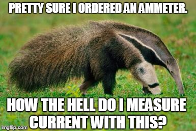 Ammeter Ordering Error | PRETTY SURE I ORDERED AN AMMETER. HOW THE HELL DO I MEASURE CURRENT WITH THIS? | image tagged in ammeter,anteater,ant eater,amazon,funny animals,cute animals | made w/ Imgflip meme maker