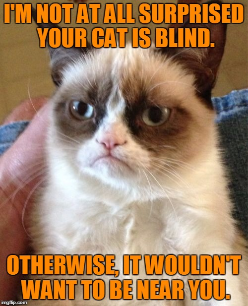Grumpy Cat Meme | I'M NOT AT ALL SURPRISED YOUR CAT IS BLIND. OTHERWISE, IT WOULDN'T WANT TO BE NEAR YOU. | image tagged in memes,grumpy cat | made w/ Imgflip meme maker
