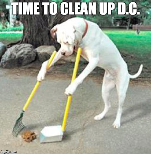 Image Tagged In Dog Scooping Up Poop Imgflip