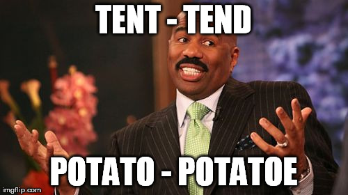 Steve Harvey Meme | TENT - TEND POTATO - POTATOE | image tagged in memes,steve harvey | made w/ Imgflip meme maker