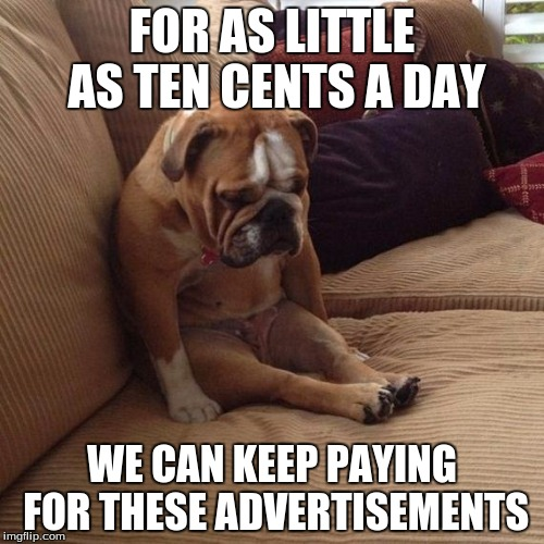 I've never understood those sad animal shelter commericals. | FOR AS LITTLE AS TEN CENTS A DAY WE CAN KEEP PAYING FOR THESE ADVERTISEMENTS | image tagged in sad dog | made w/ Imgflip meme maker
