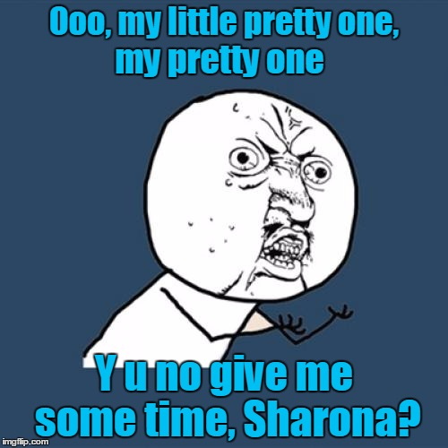 Dunh dunh dunh-nah nah | Ooo, my little pretty one, Y u no give me some time, Sharona? my pretty one | image tagged in memes,y u no,imgflip beat,music,the knack,my sharona | made w/ Imgflip meme maker
