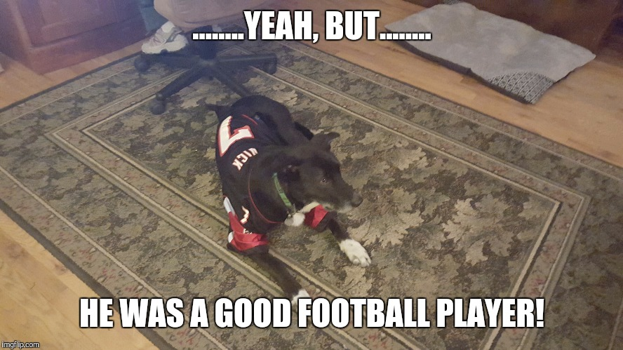 ........YEAH, BUT........ HE WAS A GOOD FOOTBALL PLAYER! | image tagged in michael vick,funny dogs | made w/ Imgflip meme maker