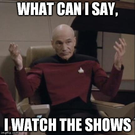 WHAT CAN I SAY, I WATCH THE SHOWS | image tagged in picard hands apart | made w/ Imgflip meme maker