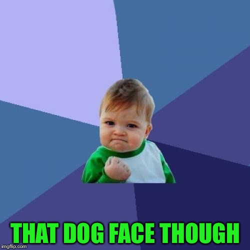 THAT DOG FACE THOUGH | image tagged in memes,success kid | made w/ Imgflip meme maker