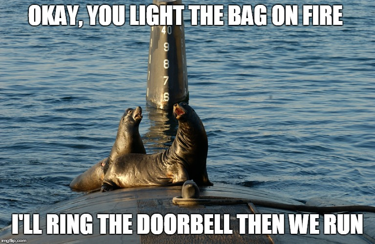 OKAY, YOU LIGHT THE BAG ON FIRE I'LL RING THE DOORBELL THEN WE RUN | made w/ Imgflip meme maker