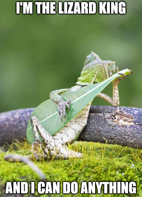 Lizard |  I'M THE LIZARD KING; AND I CAN DO ANYTHING | image tagged in memes,lizard | made w/ Imgflip meme maker