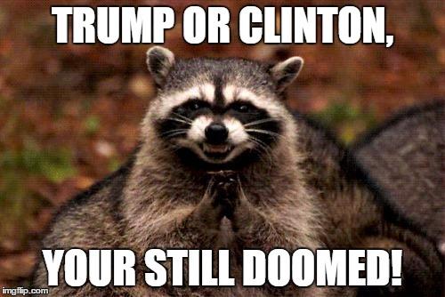 105u69 evil plotting raccoon meme imgflip