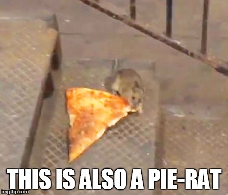 THIS IS ALSO A PIE-RAT | made w/ Imgflip meme maker