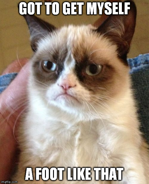 Grumpy Cat Meme | GOT TO GET MYSELF A FOOT LIKE THAT | image tagged in memes,grumpy cat | made w/ Imgflip meme maker