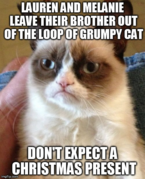 Grumpy cat meme lauren and melanie leave their brother out of the