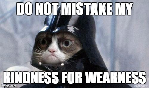 Grumpy Cat Star Wars Meme | DO NOT MISTAKE MY KINDNESS FOR WEAKNESS | image tagged in memes,grumpy cat star wars,grumpy cat | made w/ Imgflip meme maker