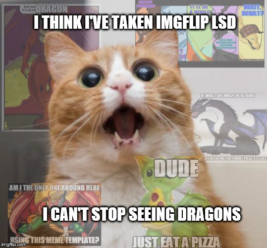Scared Cat |  I THINK I'VE TAKEN IMGFLIP LSD; I CAN'T STOP SEEING DRAGONS | image tagged in meme,dragon,starflightthenightwing | made w/ Imgflip meme maker