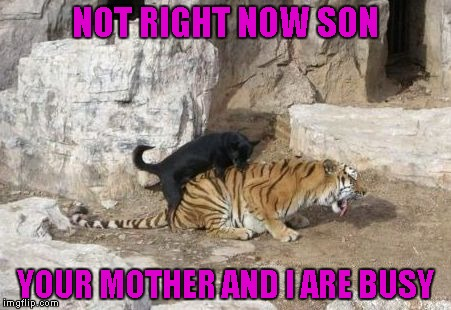NOT RIGHT NOW SON YOUR MOTHER AND I ARE BUSY | made w/ Imgflip meme maker