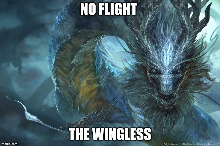 NO FLIGHT THE WINGLESS | made w/ Imgflip meme maker