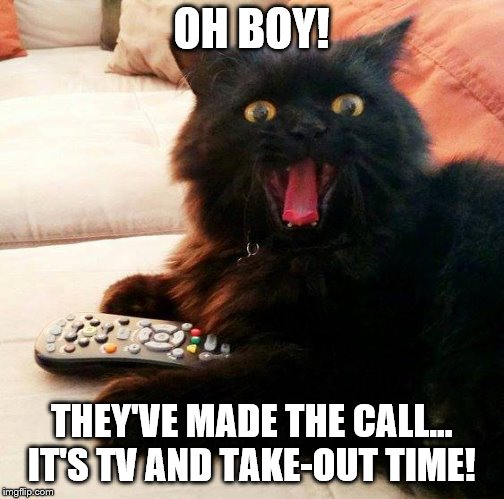 OH BOY! Cat: TV and Take-out time! |  OH BOY! THEY'VE MADE THE CALL...  IT'S TV AND TAKE-OUT TIME! | image tagged in oh boy cat,memes,take-out,tv,chinese food,call | made w/ Imgflip meme maker