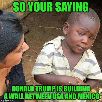 Third World Skeptical Kid Meme |  SO YOUR SAYING; DONALD TRUMP IS BUILDING A WALL BETWEEN USA AND MEXICO | image tagged in memes,third world skeptical kid | made w/ Imgflip meme maker