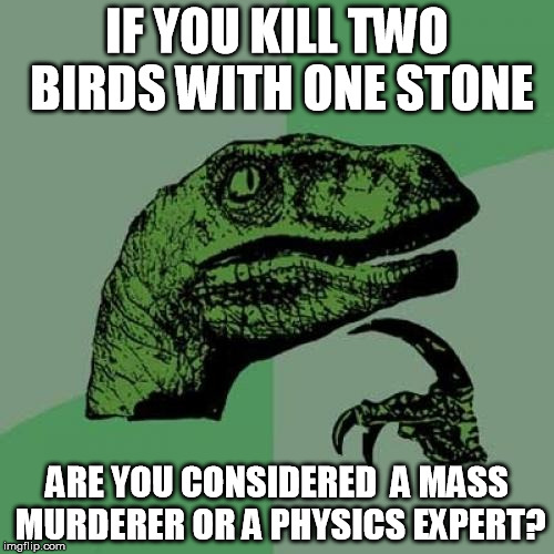 two birds with one stone |  IF YOU KILL TWO BIRDS WITH ONE STONE; ARE YOU CONSIDERED  A MASS MURDERER OR A PHYSICS EXPERT? | image tagged in memes,philosoraptor,two birds,one stone,mass murderer,physics | made w/ Imgflip meme maker