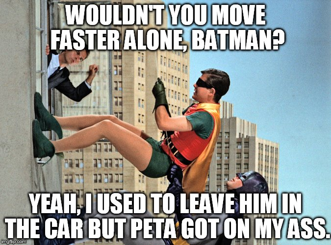 WOULDN'T YOU MOVE FASTER ALONE, BATMAN? YEAH, I USED TO LEAVE HIM IN THE CAR BUT PETA GOT ON MY ASS. | made w/ Imgflip meme maker