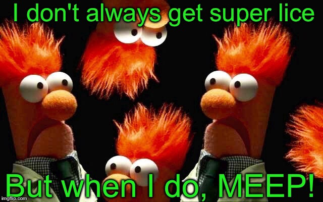 All of a sudden I feel itchy... | I don't always get super lice But when I do, MEEP! | image tagged in meep meep,beaker,funny memes | made w/ Imgflip meme maker