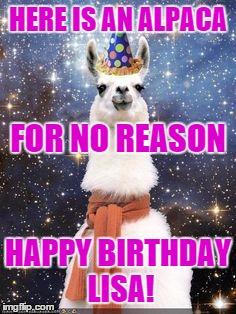 10b4so happy birthday alpaca meme generator imgflip,Alpaca Meme Generator