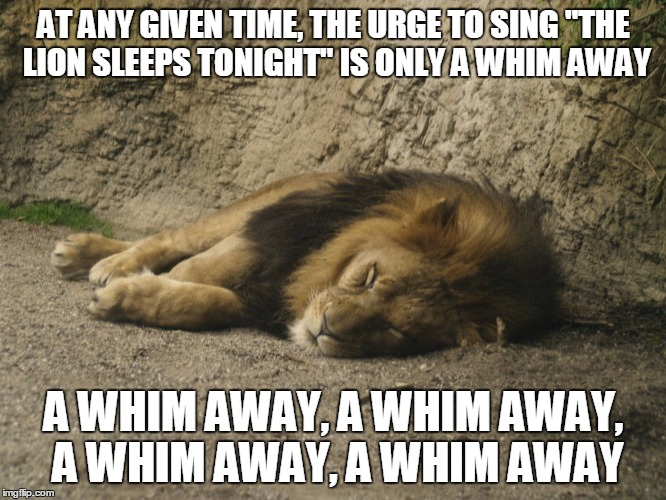 "Iiiiiiiiiiiiuiamamaweee.... | AT ANY GIVEN TIME, THE URGE TO SING ""THE LION SLEEPS TONIGHT"" IS ONLY A WHIM AWAY A WHIM AWAY, A WHIM AWAY, A WHIM AWAY, A WHIM AWAY 
