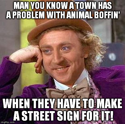 Creepy Condescending Wonka Meme | MAN YOU KNOW A TOWN HAS A PROBLEM WITH ANIMAL BOFFIN' WHEN THEY HAVE TO MAKE A STREET SIGN FOR IT! | image tagged in memes,creepy condescending wonka | made w/ Imgflip meme maker