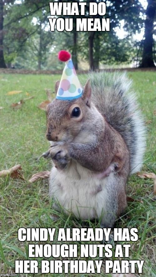 Nuts at the birthday party |  WHAT DO YOU MEAN; CINDY ALREADY HAS ENOUGH NUTS AT HER BIRTHDAY PARTY | image tagged in memes,super birthday squirrel | made w/ Imgflip meme maker
