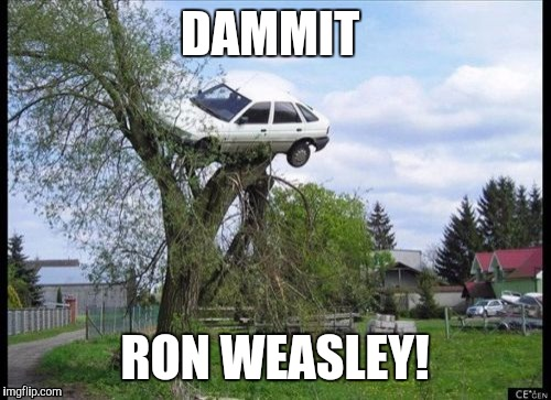 Secure Parking Meme | DAMMIT RON WEASLEY! | image tagged in memes,secure parking | made w/ Imgflip meme maker