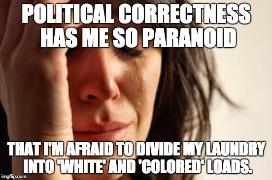 First World Problems Meme | POLITICAL CORRECTNESS HAS ME SO PARANOID THAT I'M AFRAID TO DIVIDE MY LAUNDRY INTO 'WHITE' AND 'COLORED' LOADS. | image tagged in memes,first world problems | made w/ Imgflip meme maker