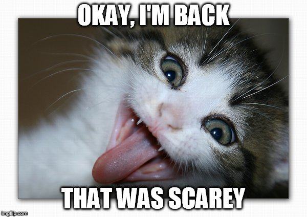 OKAY, I'M BACK THAT WAS SCAREY | made w/ Imgflip meme maker