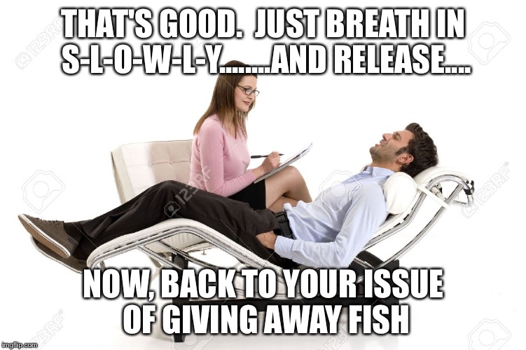THAT'S GOOD.  JUST BREATH IN S-L-O-W-L-Y........AND RELEASE.... NOW, BACK TO YOUR ISSUE OF GIVING AWAY FISH | made w/ Imgflip meme maker
