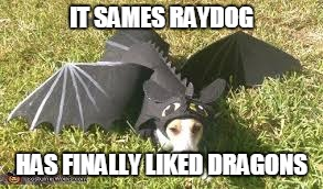 IT SAMES RAYDOG HAS FINALLY LIKED DRAGONS | made w/ Imgflip meme maker
