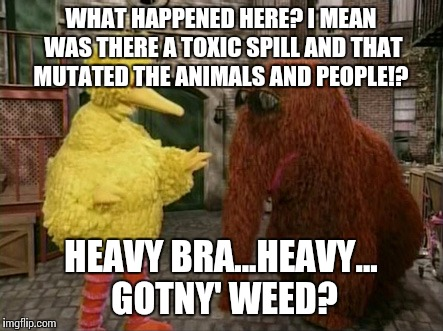 Big Bird And Snuffy | WHAT HAPPENED HERE? I MEAN WAS THERE A TOXIC SPILL AND THAT MUTATED THE ANIMALS AND PEOPLE!? HEAVY BRA...HEAVY... GOTNY' WEED? | image tagged in memes,big bird and snuffy | made w/ Imgflip meme maker
