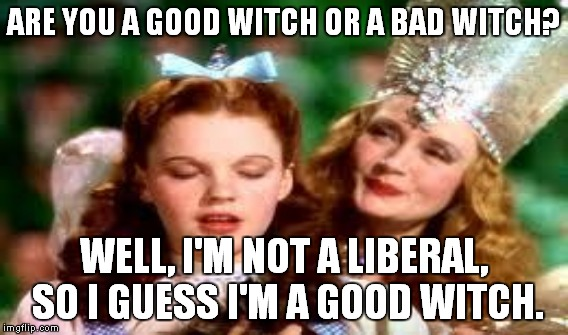 ARE YOU A GOOD WITCH OR A BAD WITCH? WELL, I'M NOT A LIBERAL, SO I GUESS I'M A GOOD WITCH. | made w/ Imgflip meme maker