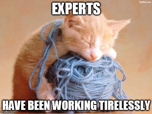 EXPERTS HAVE BEEN WORKING TIRELESSLY | made w/ Imgflip meme maker